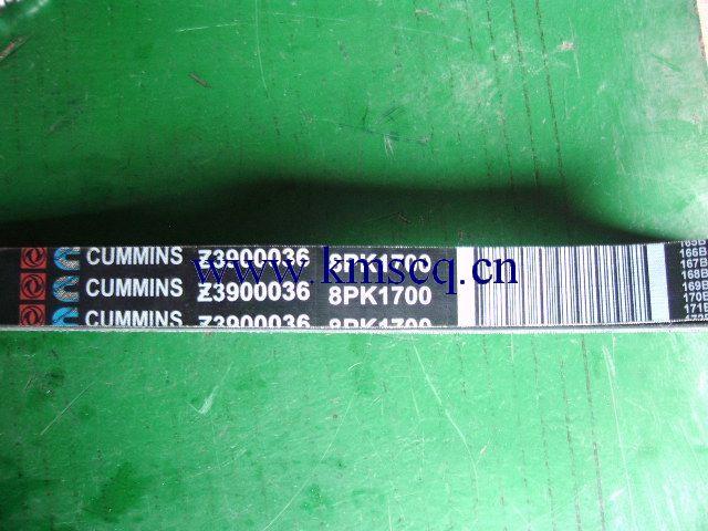 Z3900036(8PK1700)