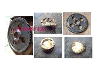 3175255柴油机配件重庆康明斯M11曲轴齿轮*