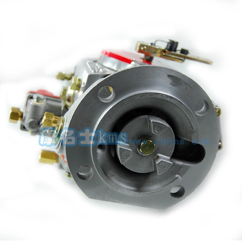 PT燃油泵3021961